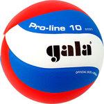 Купить Мяч волейбольный Gala Pro-Line 10 размер 5, цвет бело-голубо-красный (BV5581S)