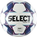 Купить Мяч футбольный Select Tempo 810416-003 (р.5)