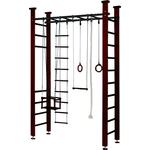 Купить Детский спортивный комплекс Карусель 4Д.02.01 с рукоходом Венге