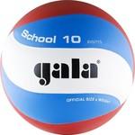 Купить Мяч волейбольный Gala School 10 (BV5711S р. 5)