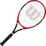 Купить Ракетка для большого тенниса Wilson Federer Team 105 GR2
