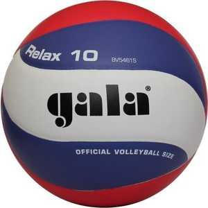 Волейбольный мяч Gala RELAX (арт. BV5461S )  - купить со скидкой