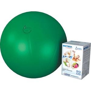 Фитбол Альпина Пласт Стандарт зеленый, диаметр 550 мм  - купить со скидкой