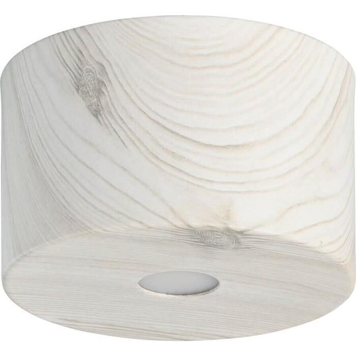 Потолочный светодиодный светильник DeMarkt 712010701