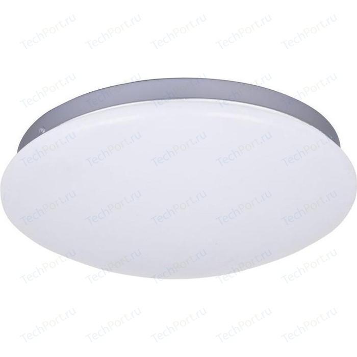 Потолочный светодиодный светильник F-Promo 2467-2C