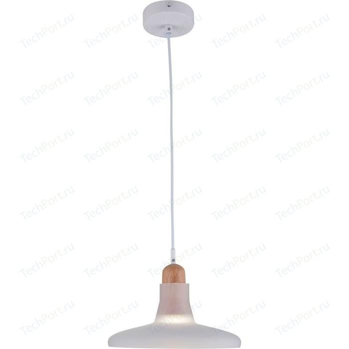 Подвесной светильник Maytoni P017PL-01W