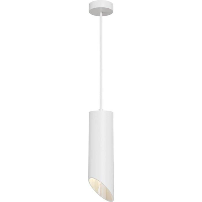 Подвесной светильник Maytoni P026PL-01W
