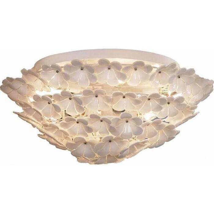 Потолочный светильник Lussole GRLSA-5107-09