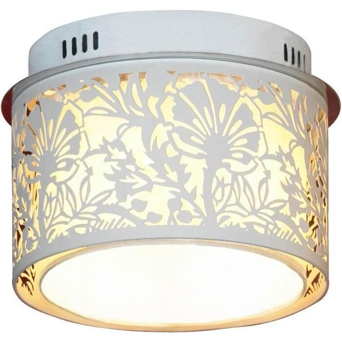 Потолочный светильник Lussole GRLSF-2307-04