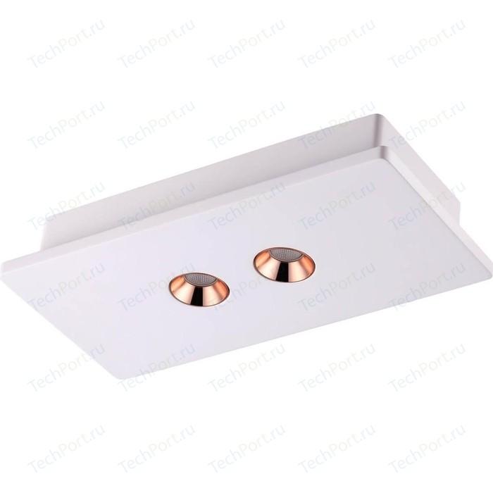 Потолочный светодиодный светильник Novotech 357939