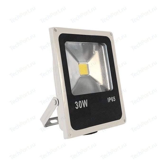 LED прожектор IMAGE LFL.597.22 30W 220V IP65 4000К