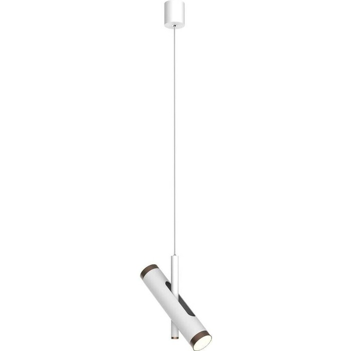 Подвесной светодиодный светильник Favourite 2325-2P