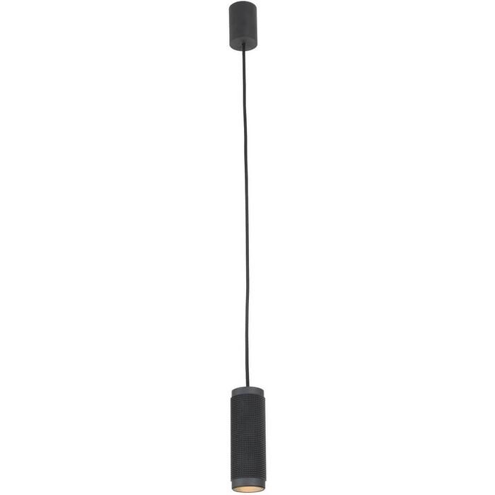 Подвесной светильник Favourite 2452-1P