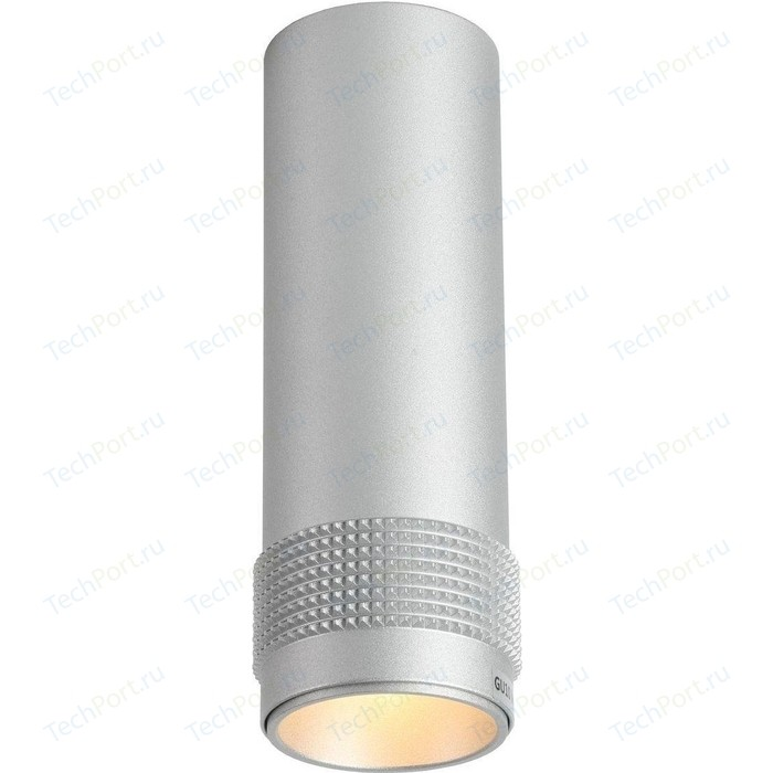Потолочный светильник Favourite 2454-1C