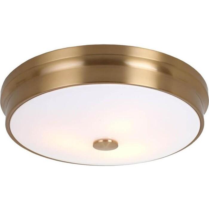 Фото - Потолочный светильник Favourite 2375-3C потолочный светильник favourite 1347 6c