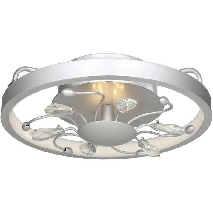 Потолочный светодиодный светильник Favourite 2523-2C