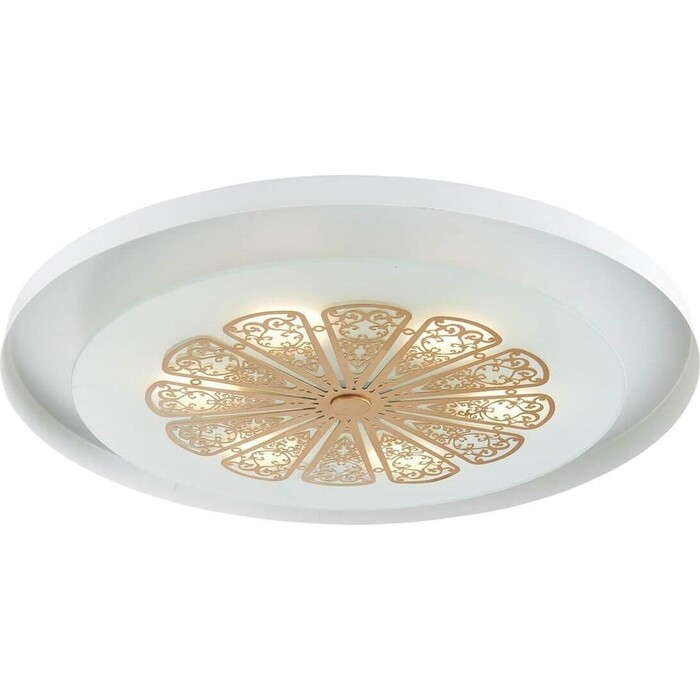 Потолочный светодиодный светильник Favourite 2602-5C
