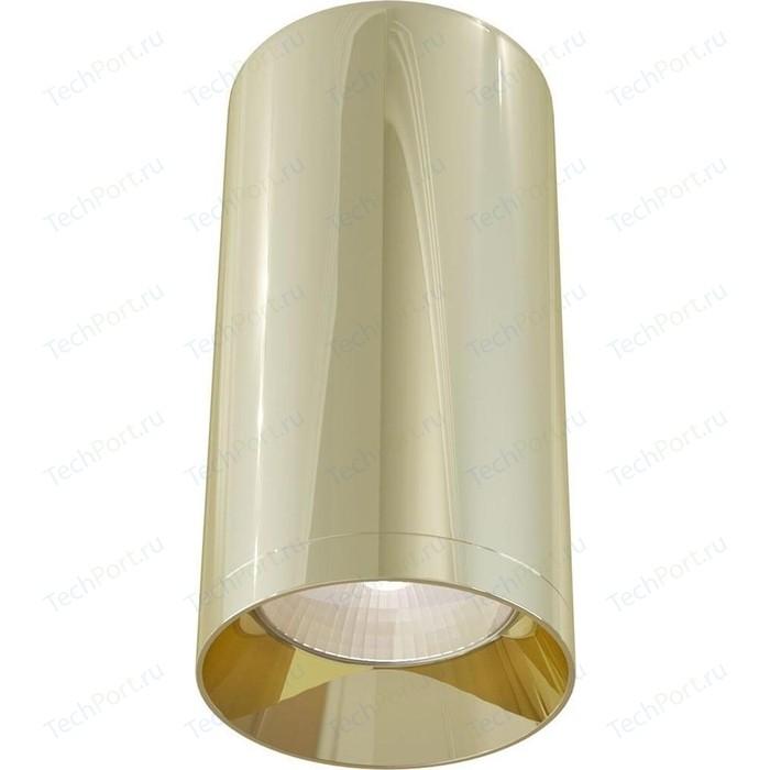 Потолочный светильник Maytoni C010CL-01G