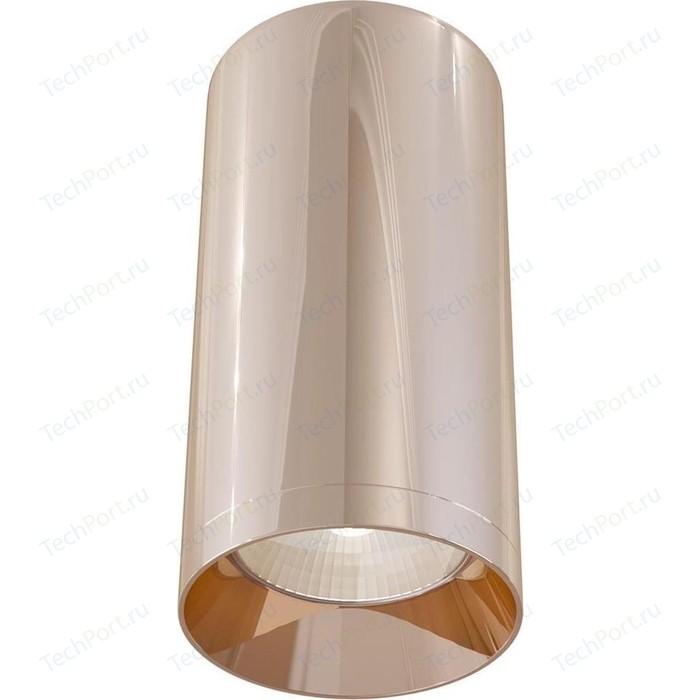 Потолочный светильник Maytoni C010CL-01RG