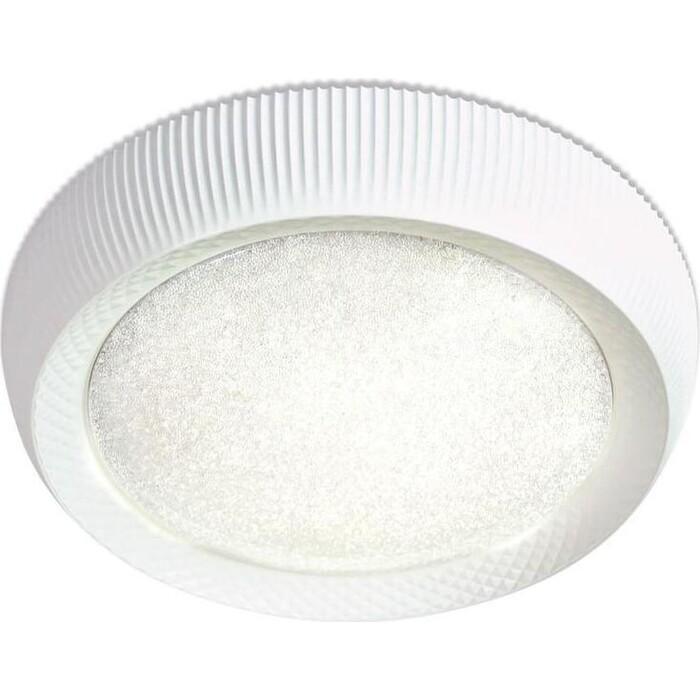 Потолочный светодиодный светильник Ambrella light FS1240 WH/SD 48W D500
