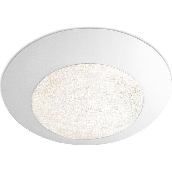 Потолочный светодиодный светильник Ambrella light FS1250 WH/SD 48W D390