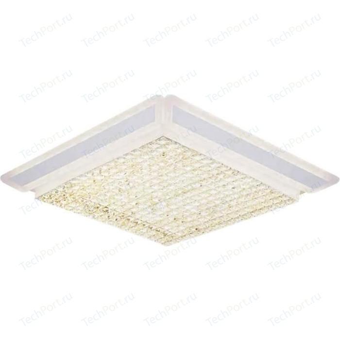Потолочный светодиодный светильник Ambrella light FA142