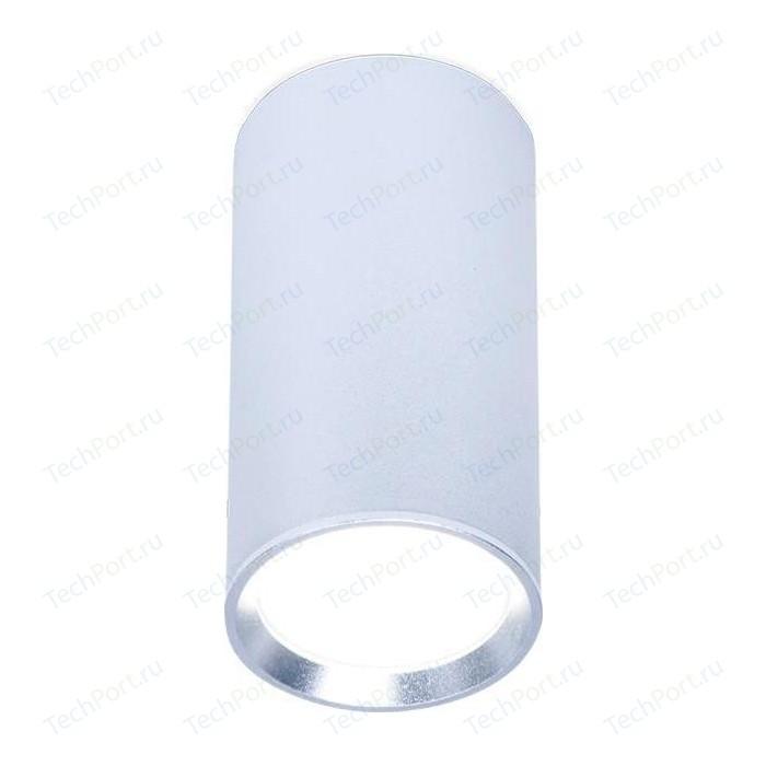Потолочный светильник Ambrella light TN219
