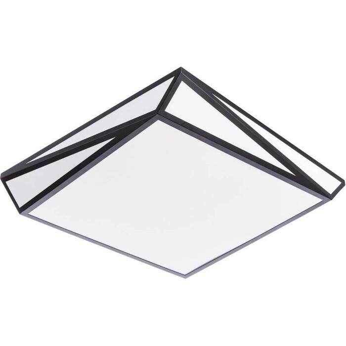 Потолочный светодиодный светильник Arte Lamp A1929PL-1BK