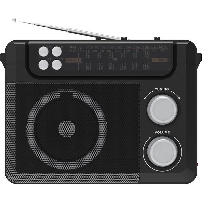 Портативный радиоприемник Ritmix RPR-200 black