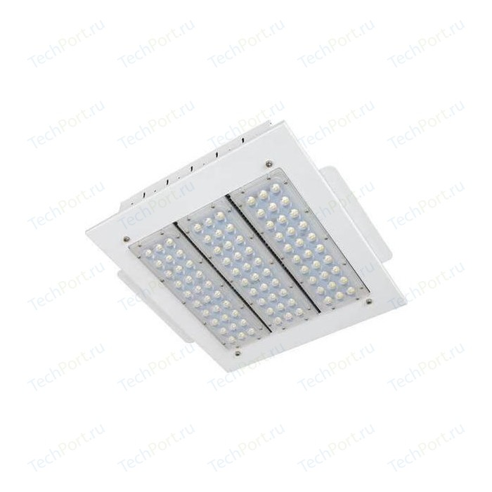 Уличный светодиодный светильник Horoz 069-001-0110