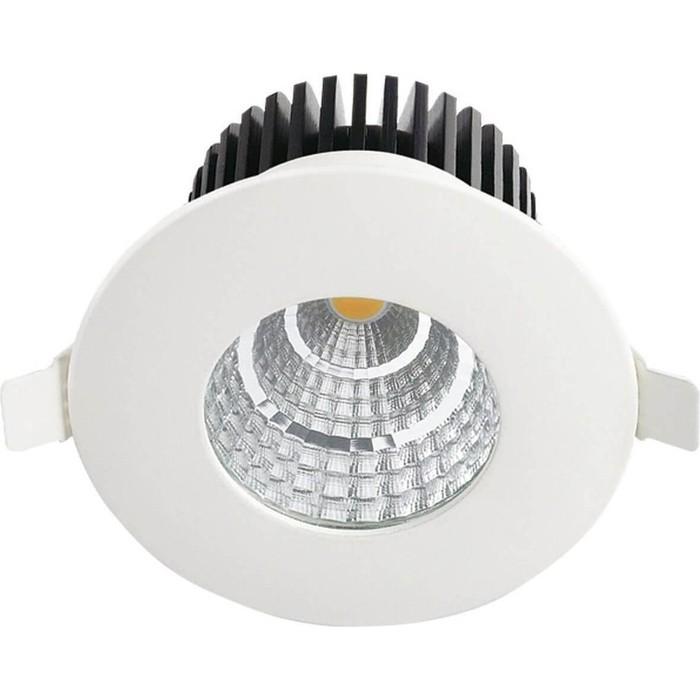 Уличный светодиодный светильник Horoz 016-029-0006