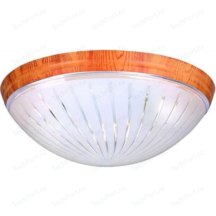цена на Потолочный светильник Horoz 400-041-104