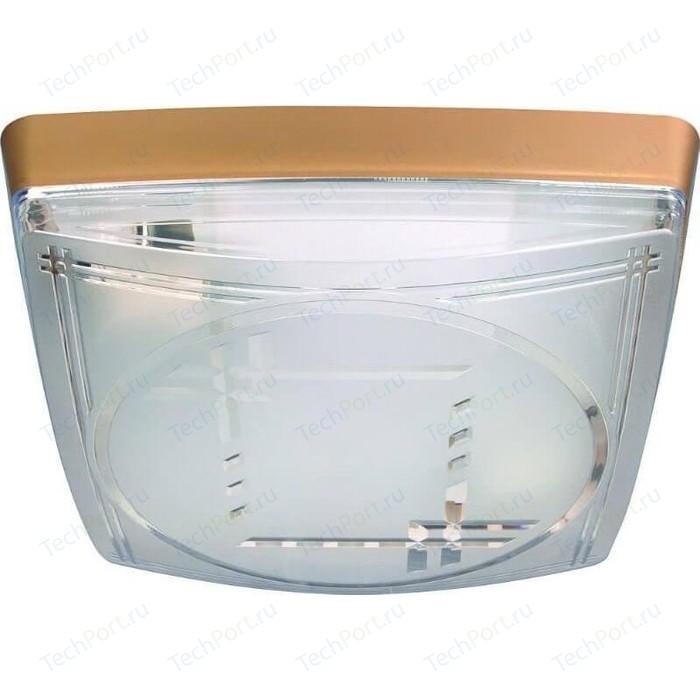 Потолочный светильник Horoz 400-021-103