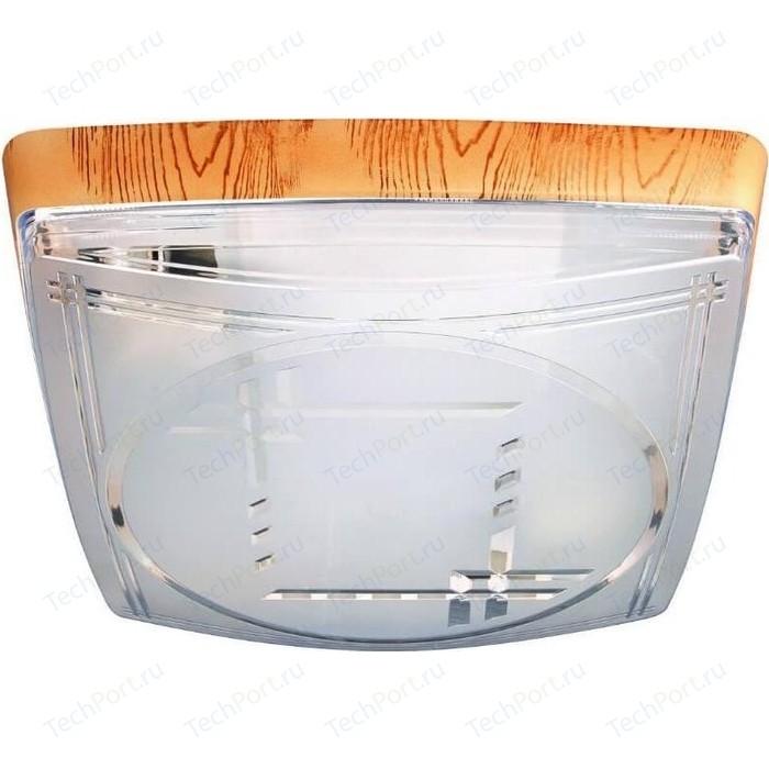 цена на Потолочный светильник Horoz 400-041-103