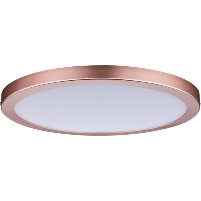 Потолочный светодиодный светильник Paulmann 70872