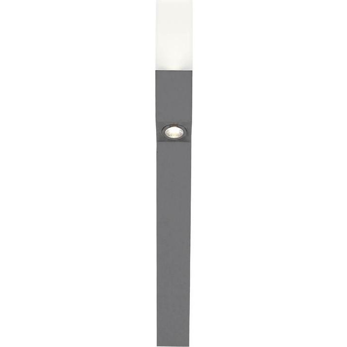 Уличный светодиодный светильник ST-Luce SL100.705.02