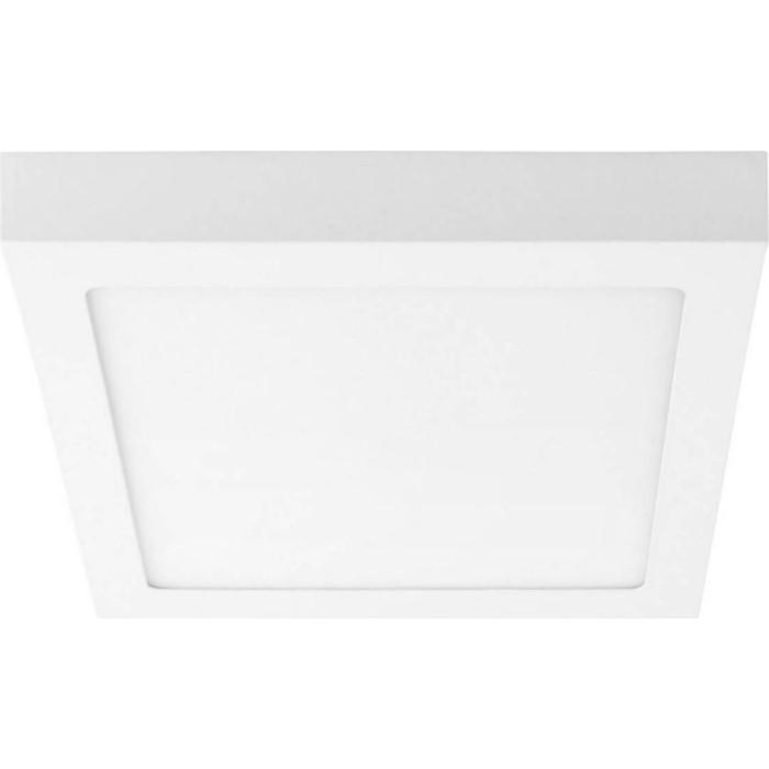 Потолочный светодиодный светильник Lightstar 324124