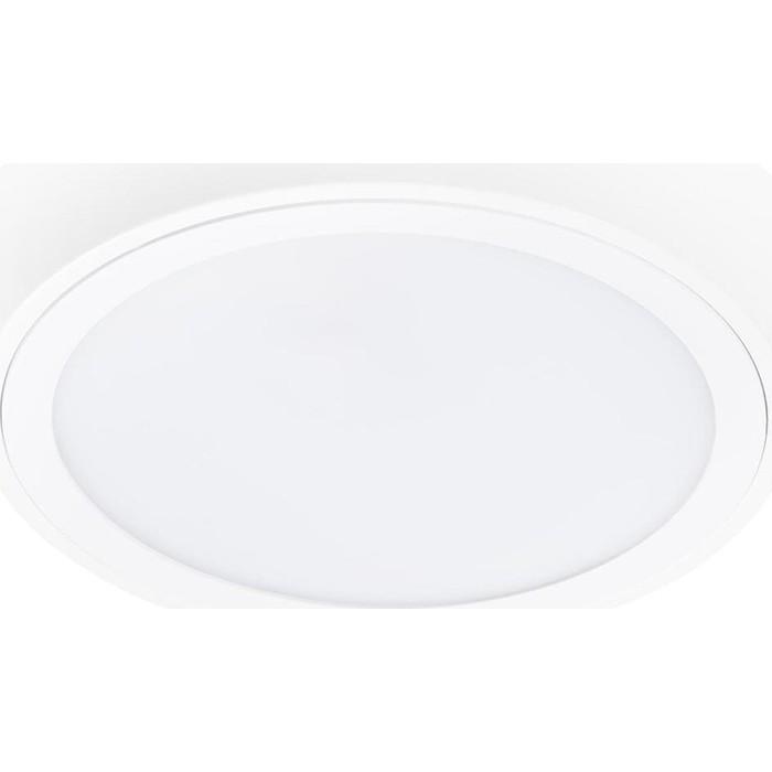 Потолочный светодиодный светильник Lightstar 216904