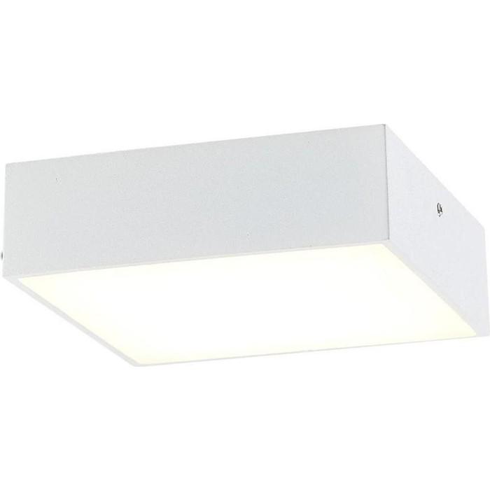 Накладной светодиодный светильник Citilux CL712X120N