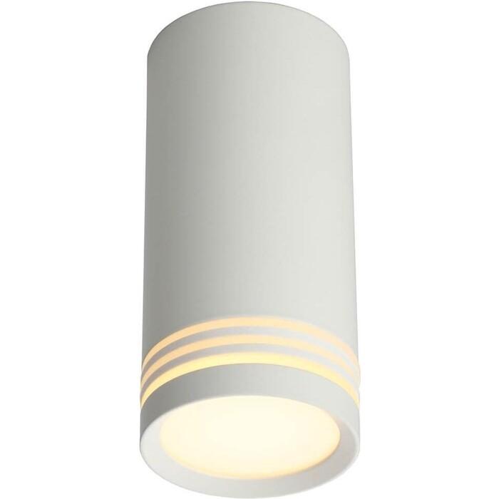 Потолочный светильник Omnilux OML-100809-01