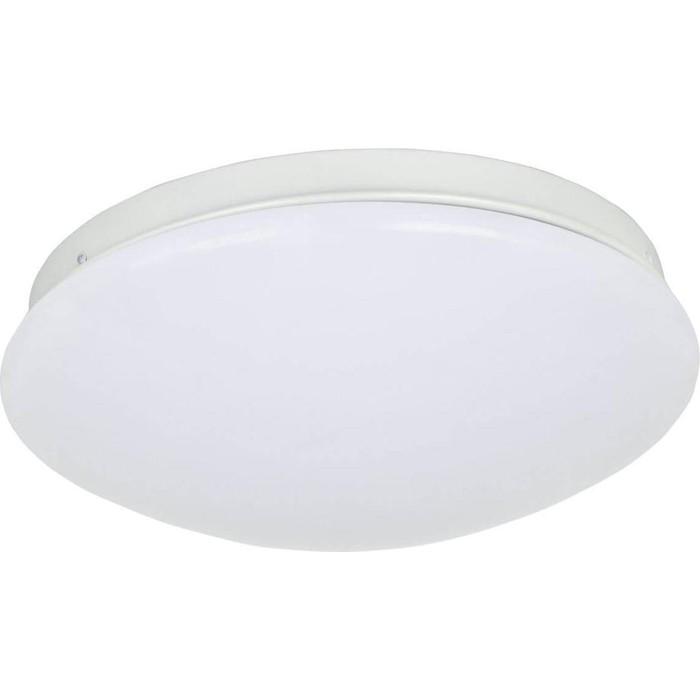 Потолочный светодиодный светильник F-Promo 2469-2C
