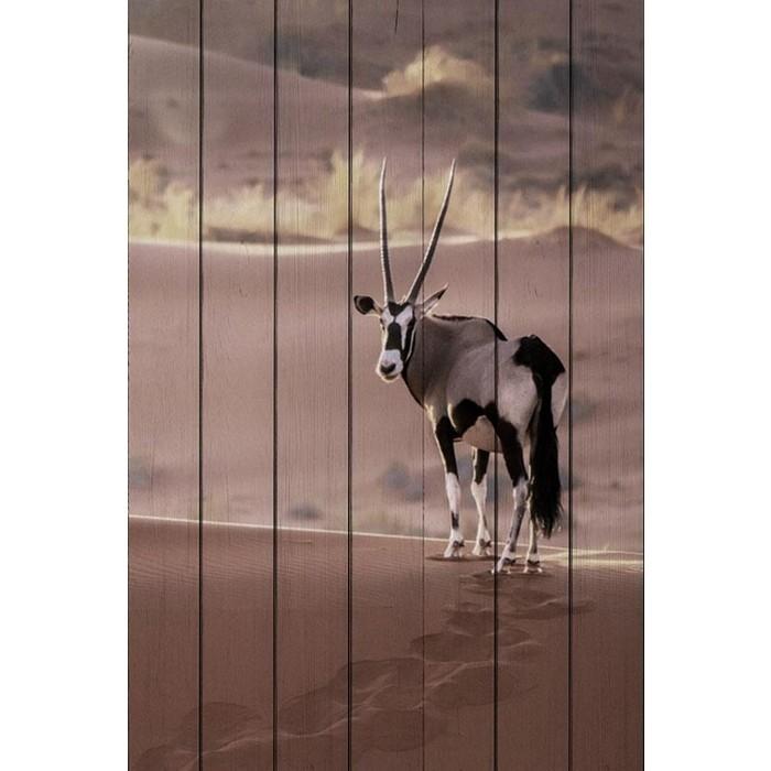 Картина на дереве Дом Корлеоне Антилопа в пустыне 80x120 см