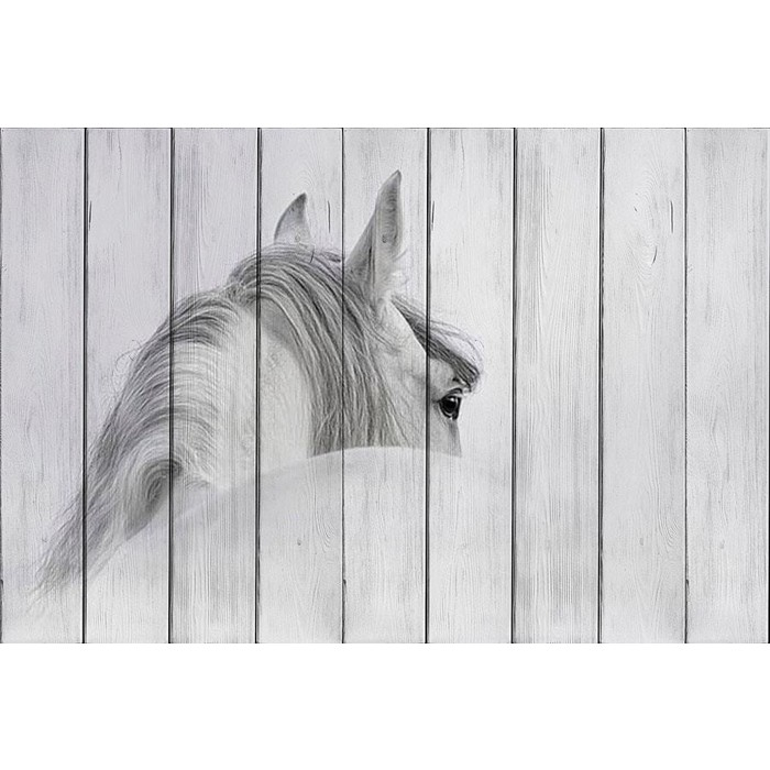 Картина на дереве Дом Корлеоне Белая лошадь 60x90 см