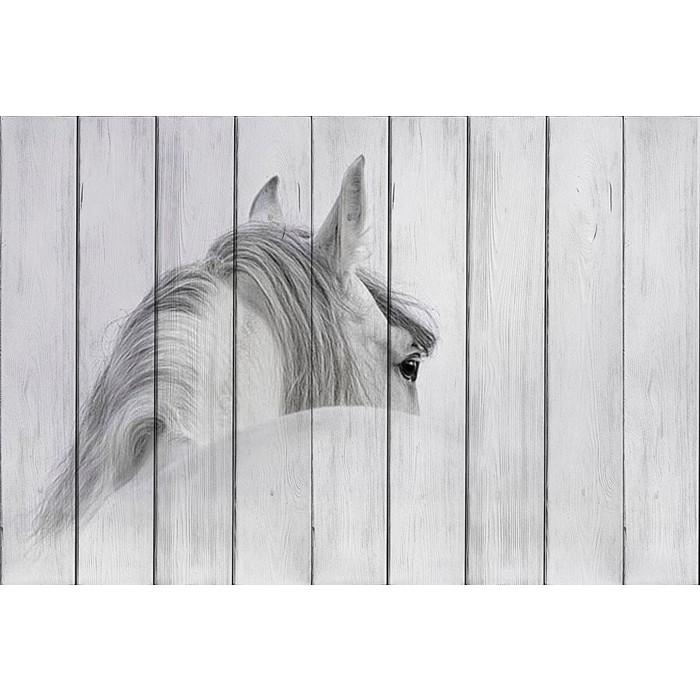Картина на дереве Дом Корлеоне Белая лошадь 80x120 см