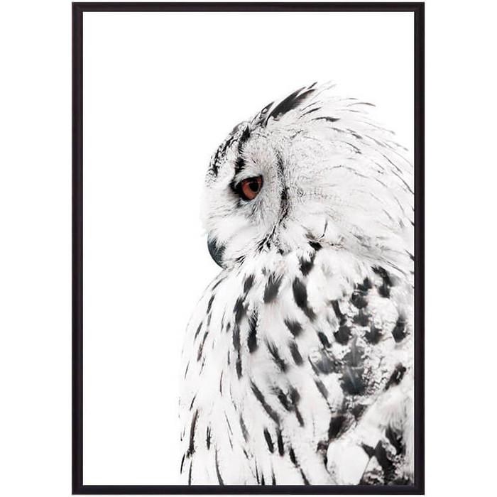 Постер в рамке Дом Корлеоне Белая сова 21x30 см