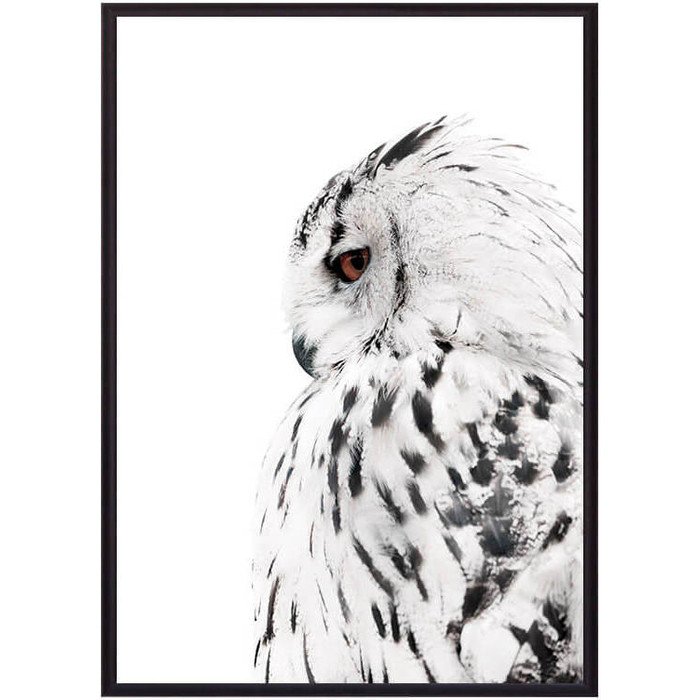 Постер в рамке Дом Корлеоне Белая сова 30x40 см