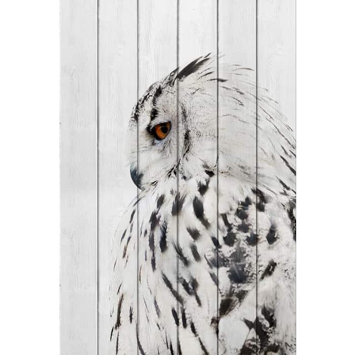 Картина на дереве Дом Корлеоне Белая сова 100x150 см