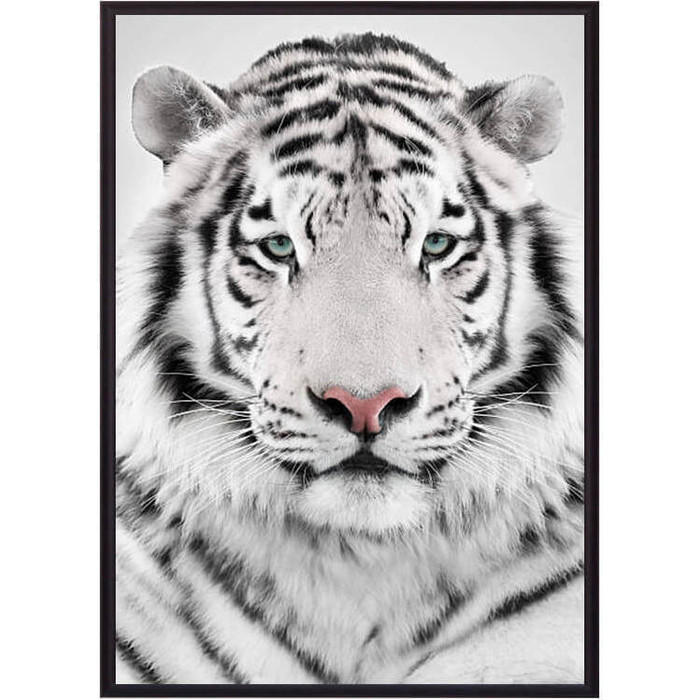 Постер в рамке Дом Корлеоне Белый тигр 30x40 см постер в рамке дом корлеоне горы 30x40 см