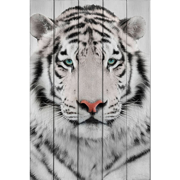 Картина на дереве Дом Корлеоне Белый тигр 80x120 см картина на дереве дом корлеоне хамелеон 80x120 см