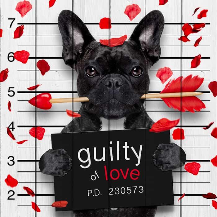 Картина на дереве Дом Корлеоне Влюбленная собака 120x120 см